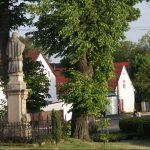 Nie można ograniczać rozwoju polskiej wsi!