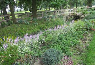 Najpiękniejsze ogrody nagrodzone