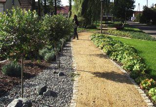 Zagospodarowanie terenu centrum wsi Stare Siołkowice
