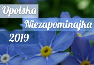Zagłosuj na Opolską Niezapominajkę!